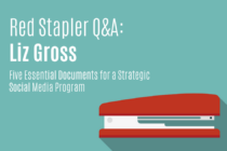 Red Stapler Q&A: Liz Gross